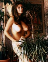 Big Natural from The Past – Cynthia Myers